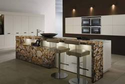 Petrified Wood Kitchen Counter