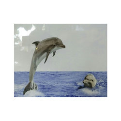 Dolphin Bathroom Tiles, For Wall Tile , Thickness: 10-15 Mm