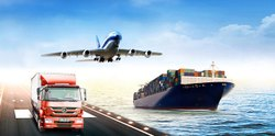 Air Freight Export Custom Clearance Service