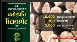 Agriculture Land With TeakWood  Tree On Nagpur- Chandrapur Road