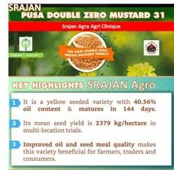 Pusa Mustard Seed -31 Canola Grade, High Yielding 25 q / Hq Oil Content Is Higher 41.5 Percent