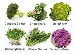 Brockley Vegetable