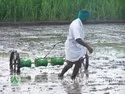 Hand Operated Manual Rice Seeder
