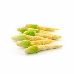 A Grade Baby Corn, Packaging Type: Net Bag