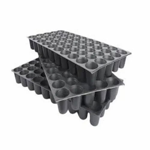 50 Cup Seedling Tray