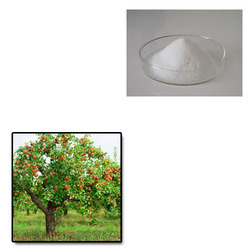 Super Absorbent Polymer For Fruit