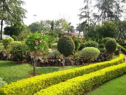 Grass Parks Or Gardening Landscape Development, Maharashtra, Coverage Area: >10000 Square Feet