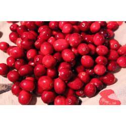 Frozen Cranberry Pulp
