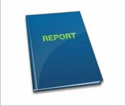 Project Reports Services