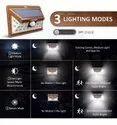 Solar Powered Light with 24 LED Wood Finished