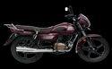 Tvs Motorcycle, Tvs Radeon