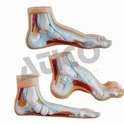 Atico PVC Flat Foot Model