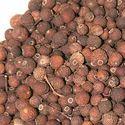 Pimento Officinalis Myrtaceae