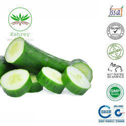 Cucumber Oil