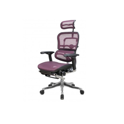 Designer Director Chair