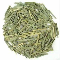 Lemongrass TBC - Cymbopogon Citratus TBC