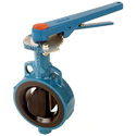 Audco  Cast Iron Butterfly Valves