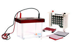 Mini Dual Wet Blot Apparatus - Rapid Model