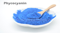 Phycocyanin Pigment