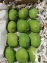 Fresh Badami