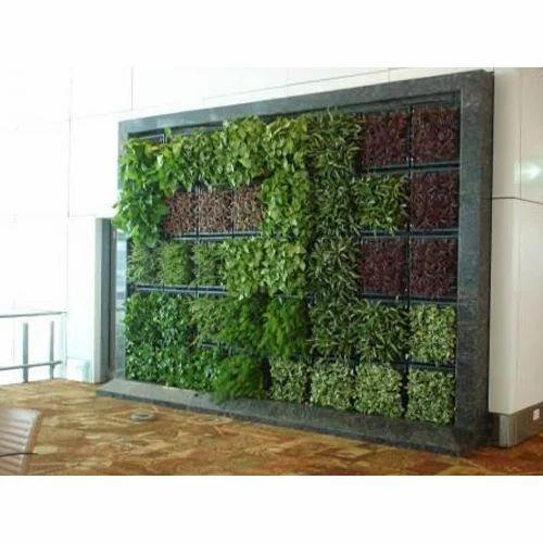 Pot Indoor Vertical Garden Rs 350 Square Feet Ketan Interior