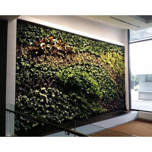 Life Wall Indoor Vertical Garden Rs 975 Square Feet Lifewall