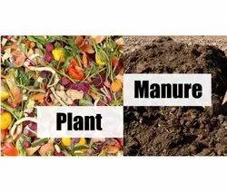 Organic Farming Manure