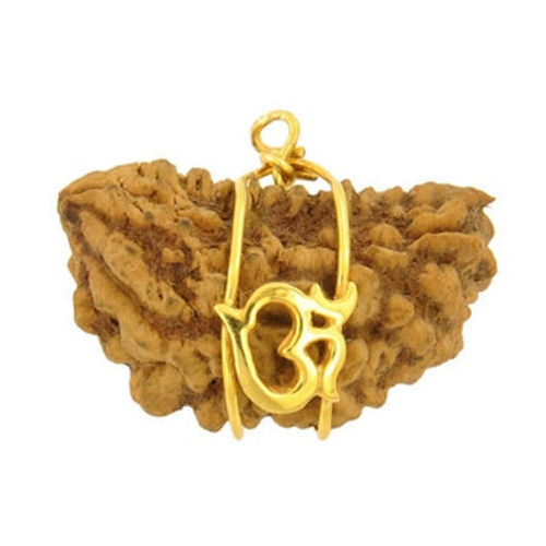 CaratYogi Real 5 Mukhi Five Face Rudraksha Pendant Round Rudraksh Sterling Silver Locket Chakra Healing