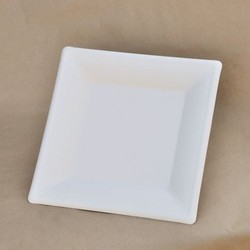 Bagasse Square Plate
