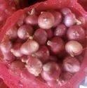 Red A Grade Maharashtra Onion, For Human Consumption, Net Bag, 20 Kg