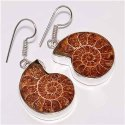 Ammonite 925 Sterling Silver Finished Earrings