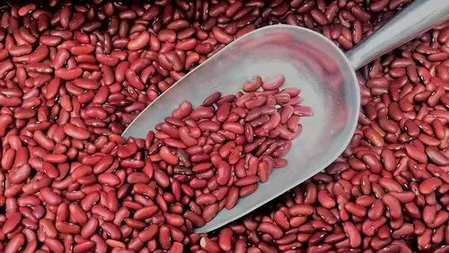 R S Exports Red Kidney Beans High In Protein Rs 145 Kg R S Exports Id 22420035388