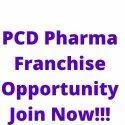 Top PCD Pharma Franchise