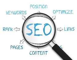 Search Engine Optimization Service, In Pan India