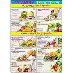 Food And Nutrition Charts