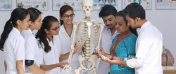 Bachelor of Physiotherapy