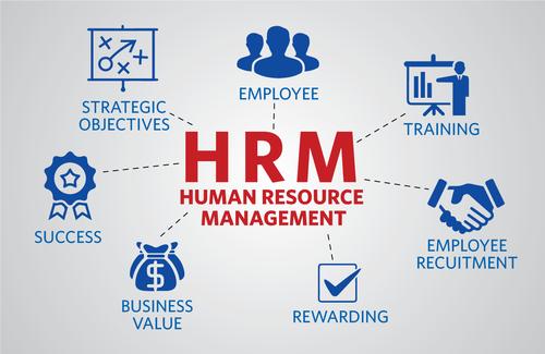 Human Resource Management Software at Rs 100000 /piece | Sukhrali ...