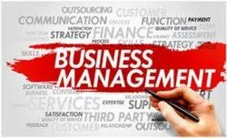 Small Business Management Consulting Services