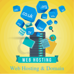 Website Domain Hosting Service