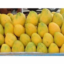 Aam (Mango), आम (आम), Fresh Fruits   Unchwagarhi