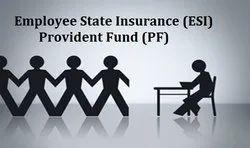 PF ESI Solutions