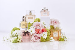 Bouquet Fragrances