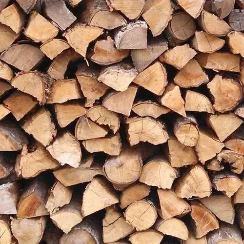 Elm Firewood Fire Wood Fuel Wood फयर वड Dev Traders