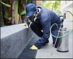 Chemical Treatment Commercial Pest Control Services, in Delhi NCR, Day And Night