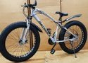 Bengshi Silver Fat Tyre Cycle
