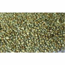 25 kg Green Millet