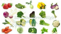Chinese Cabbage A Grade Exotic Vegetables, Packaging Type: Gunny Bag, Packaging Size: 1 kg