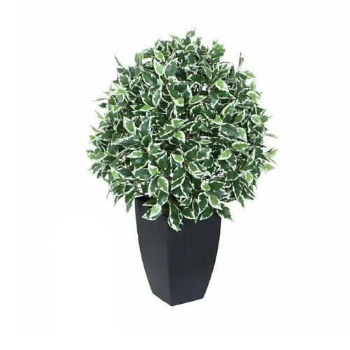 Artificial Indoor Plants, Fake Plant, Kritim Paudhe - Novelty Stores ...