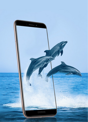 Gionee F 205 Mobile Phone
