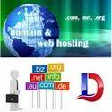Domain Name & Hosting Service